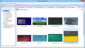 vmware workstation VMware Workstation 10.0.7 官方简体中文版下载