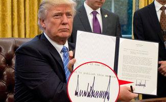 特朗普签名曝光 网友 这是心电图还是地震记录
