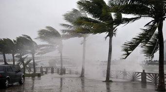 我国国土空间上常见的自然灾害... 火山、地震灾害,山体崩塌、滑坡...