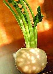 白萝卜用起来最好用煲,特别是牛肉萝卜,它俩最合脾气,煲主要是...