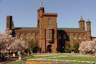 预算紧张 美国博物馆面临策展窘况