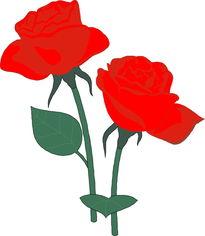 ...图片 植物图,描写花草树木的成语,花草图,应花草,印花草,植...