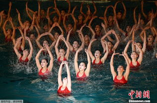朝鲜举行花游表演 庆祝金正日诞辰71周年