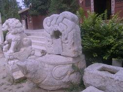 证了行善寺历史沧桑的明代柏树   太清宫   对面有一座   鬷假楼   鬷假楼 ...