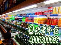 ...川最大的冰柜,成都超市用推拉门冰柜,百货商场用大容积冰柜