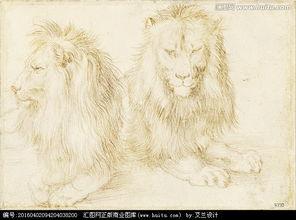 狮子素描,其它,设计素材,设计,汇图网