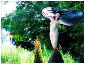 全裸美女,一丝不挂,谁先到谁能看到