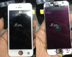 ...rgizmo.com)-尺寸未改变 白色iPhone 5C屏幕面板曝光