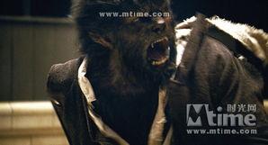 wolf狼-狼人 man wolf