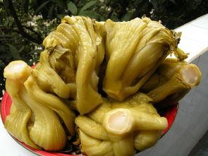 qq的个性签名大全女生腌制的酸菜-江州酸菜通过 绿色食品 酱腌菜 标准