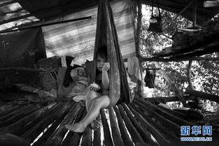 拉姆蕾姆彩色h本子- 峇南山区的原始森林横跨印尼、文莱,大约有2000平方公里,是东南...