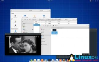 Elementary OS 0.3.1 发布,基于 14.04.3