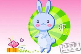 文化象征 生肖兔