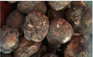 秘鲁玛卡 玛咖 多少钱一斤 秘鲁进口黑玛卡价格揭秘
