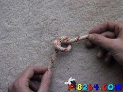 2.2 双绳单半结 Single Overhand Knot with 2 Ropes-攀岩绳结教材 二