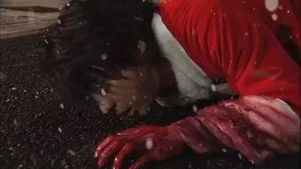 2007年《热血高校》(芹泽多摩雄)-清秀小鲜肉 热血不良少年 胡须大...