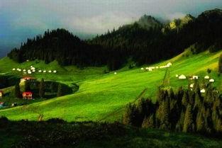 新疆南山牧场一日游