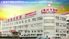 上海城市整形医院地址