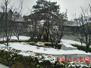 后来的雪-3月25日讯(   )虽然3月已过大半,24日晚,南部山区跑马岭附近还是...