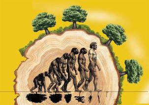 人与自然——你身边的化学小知识