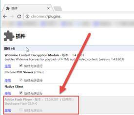 如何禁用Chrome浏览器的Flash