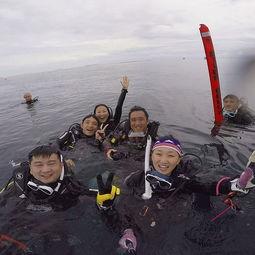 ...一个独特的潜水圣地 -2017马布岛 旅游攻略 门票 地址 游记点评,仙...