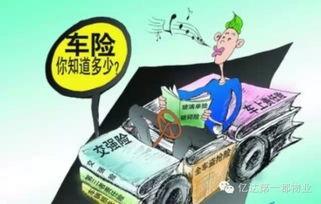 汽车保险计算器