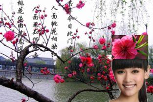 描写鲜花的诗句-二月春归风雨天,碧桃花下感流年.   残红尚有三千树,不及初开一朵...