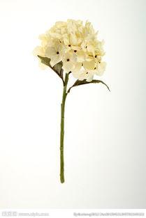 用彩纸制作一束花