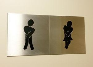 全透明厕所对外开放 男女厕所仅隔一玻璃游客不敢亲身体验