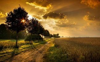 傍晚唯美意境图片 傍晚也是一道亮丽的风景线