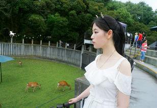 ... ,久别重逢,凉暮之月漫步关西】-,日本自助游攻略 马蜂窝