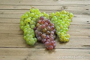 木葡萄的生长习性