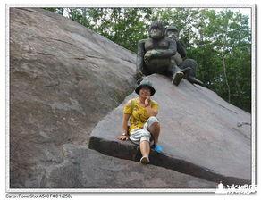 寻找遗忘的童年 游哈尔滨北方森林动物园有感 090704