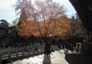 【从前有座山,山上有座庙~~PS:这个寺院香火很旺的奥~~】-香山...