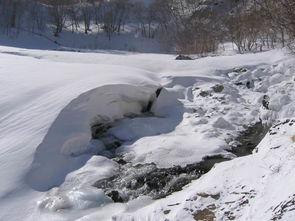 候鸟从冬天经过 我的白山松水行