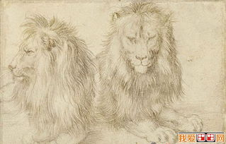 丢勒素描狮子作品欣赏-德国著名画家丢勒素描动物作品欣赏 5