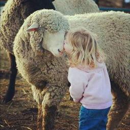 一组人与动物超有爱照片