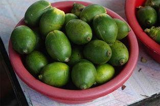槟榔的功效和作用,槟榔的危害和好处是什么