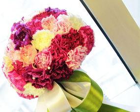 诺笙花-春天是百花盛开的季节,在这个季节,无论是含苞待放的花苞,还是娇...