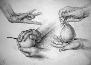 素描画作-手-湖北大学 在职高中教师 美术教师 熊老师
