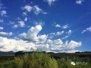 ...路口,本溪县的天空已美成一片海