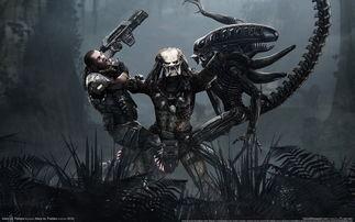 经典电影游戏 异形大战铁血战士游戏壁纸