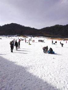 万修皆道-茅草坝滑雪场,项目位于兴隆镇旅游环线(天鹅池路段),每到冬季,...