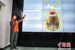 2017年香港马会特码公式 百度 经验