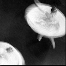 吧雷舞性生活-乌多·雷莫斯30多年的摄影艺术经历,提供给人们视觉感官的,是通常...