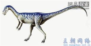 刺世龙雀-多齿的诺弗勒恶龙用其向前突出的前牙像矛一样刺中猎物,之后用其刀...