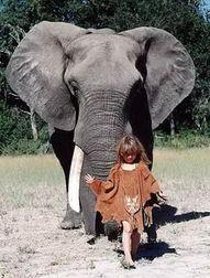 法国 丛林女孩 蒂皮与动物亲密照被指作假