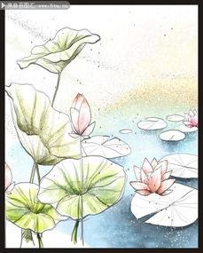 彩铅画花卉图片