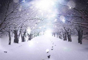 雪的歌-扩展资料:   背景音乐(Background music,简称BGM),也称伴乐、...